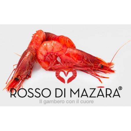 GAMBERO ROSSO DI MAZARA KG.1 MIS.45/52 GELO